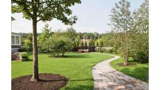 """Ristrutturare giardini e terrazzi, confermato il """"bonus verde"""": ecco a chi spetta"""